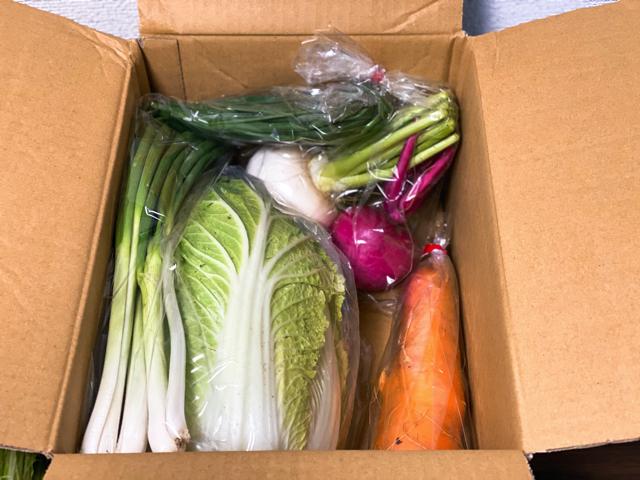 食べチョク コンシェルジュの野菜3