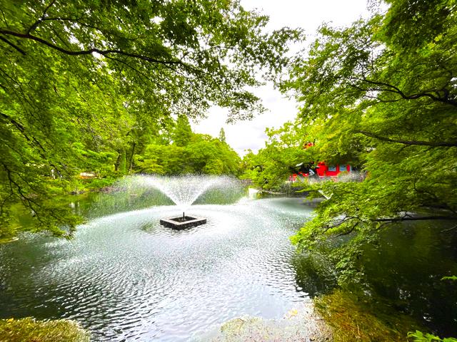 吉祥寺の井の頭公園の噴水