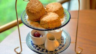 吉祥寺のムレスナティー東京のスコーンと紅茶1